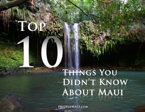 Top Ten Things You Didn't Know About Maui