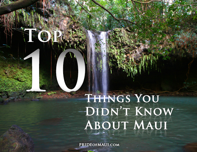 Top 10 Things You Didn't Know About Maui