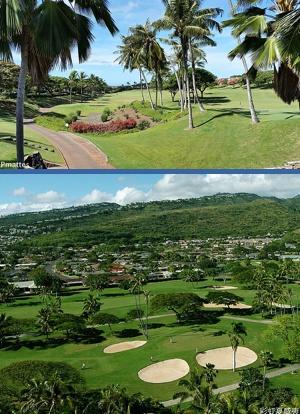 Golfing Hawaii