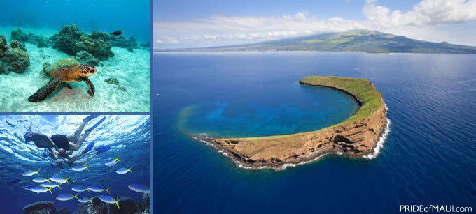 Hawaii Things To Do Top Things To Do See In Hawaii - 10 cool islands to visit on your hawaiian cruise