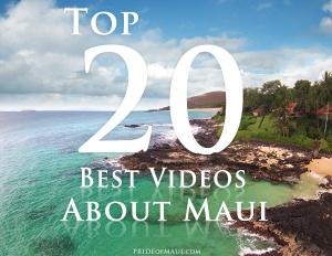 best Maui videos