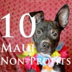 Top 10 Maui Non-Profits