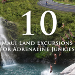 Top 10 Land Excursions on Maui