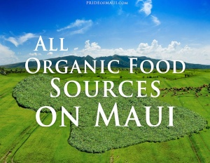 organic-food-sources-maui_featured