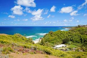 wedding spots hawaii