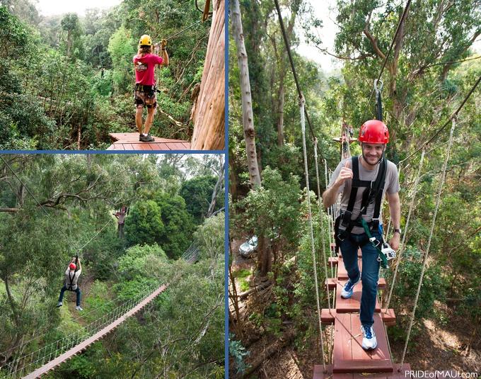 upcountry ziplining maui