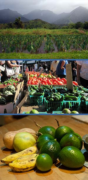 kauai farms, peppers, limes and tomatoes for sale, avocados, bananas and limes at home