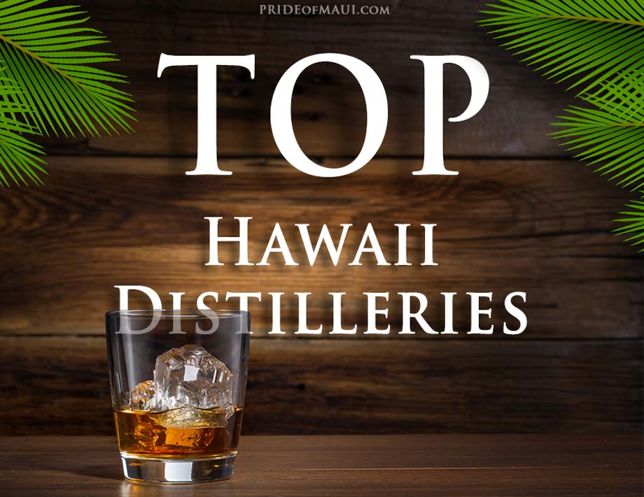 Best Distilleries in Hawaii