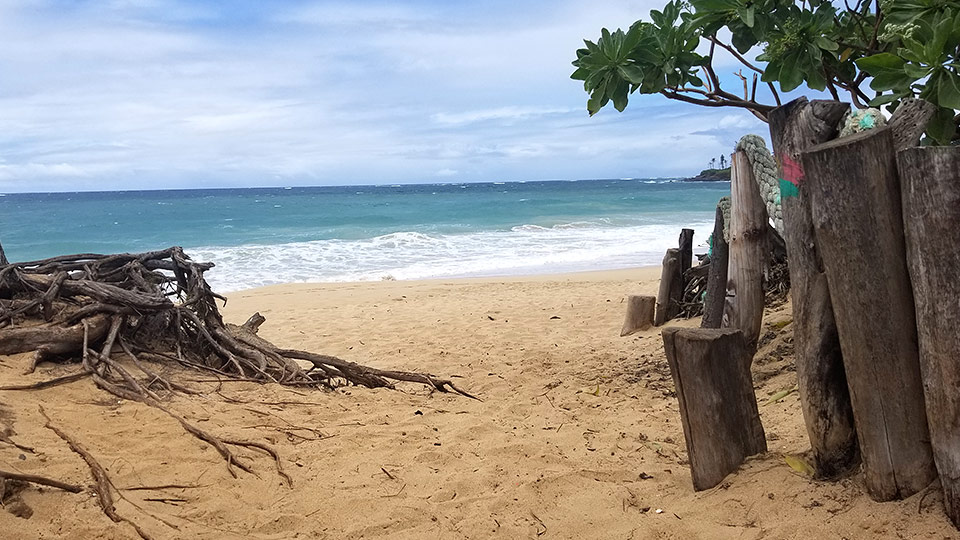 Paia Bay beach with a wave breaking.