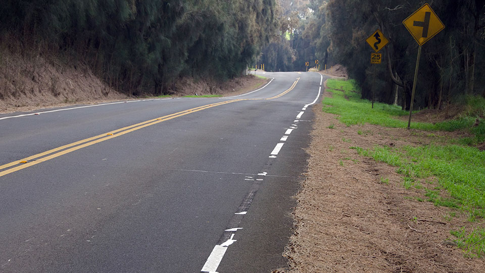 A Country road in Hawi.