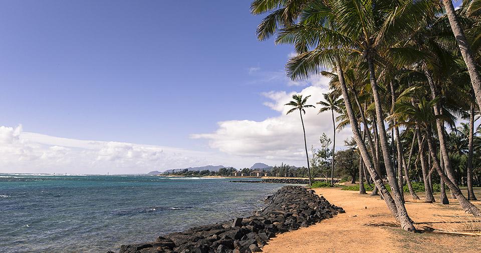 The tropical coastline of Kapa'a, Kauai.