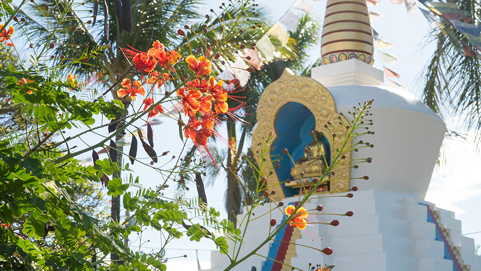 Paia Temple