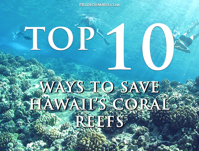 10 Things You Can Do to Help Save Hawaii's Coral Reefs