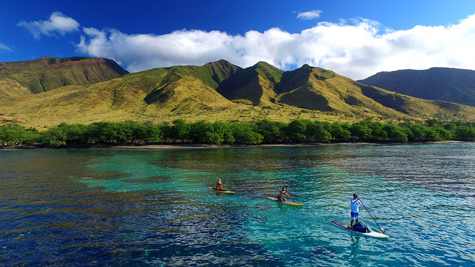 Stand-Up Paddle Maui