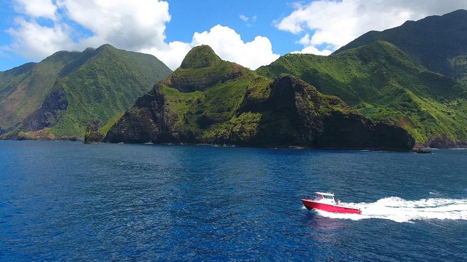 Maui Sportfishing