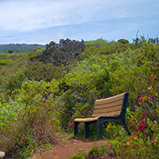 maui best trails