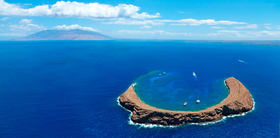 molokini and turtle town snorkel