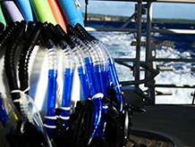 Snorkel Gear