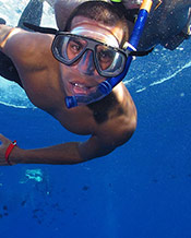 Best Maui Hawaii Snorkeling Tour