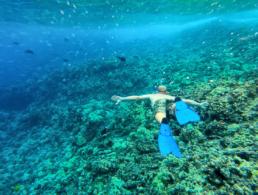 Top Maui Molokini Snorkel Tour