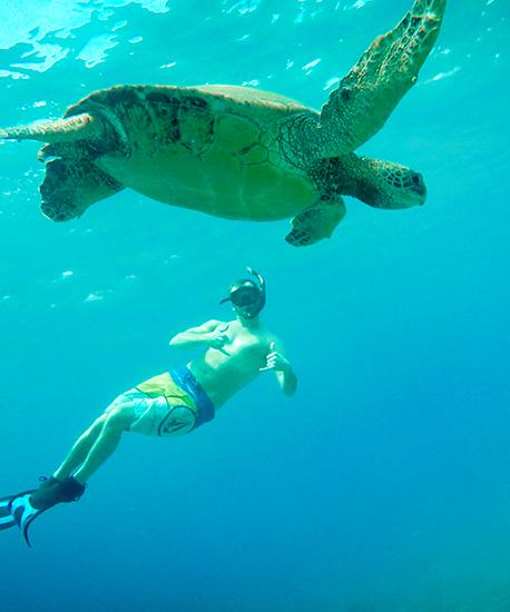 Turtle Town Snorkel Adventure