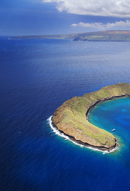 Best Maui Hawaii Molokini Snorkel Cruise
