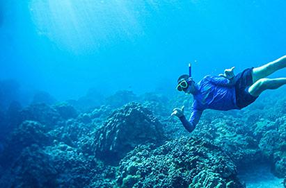Snorkeling at Coral Gardens