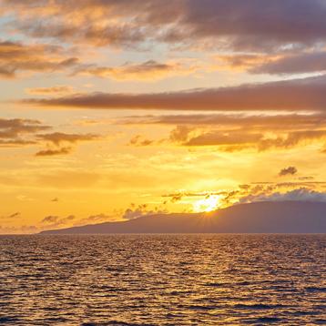 best maui sunset cruise views