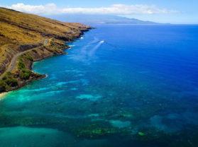 Maui Hawaii Adventure Snorkel Coral Gardens