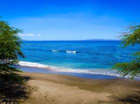 Best Adventure Cruise Olowalu Maui Coral Reef Snorkel Tour