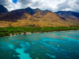 Best Holiday Olowalu Maui Coral Reef Snorkel Tour