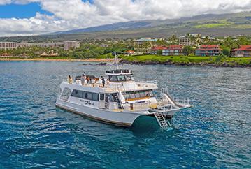 Best Maui Afternoon Snorkel Adventure